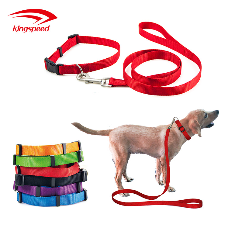 Best Selling Good Quality Pet Accessories Nylon Dog Collar and Leash