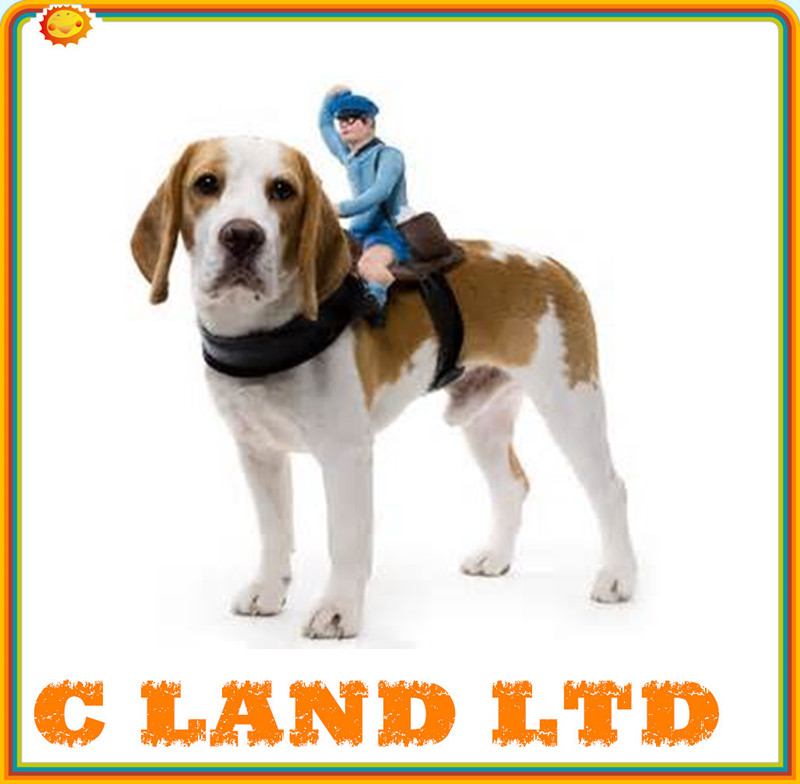 Exclusive Newest Wholesale Pet rider Clothing