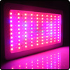 2015 best full spectrum 600W LED grow light for plants 600w Grow Light For Hydro Plant Growth
