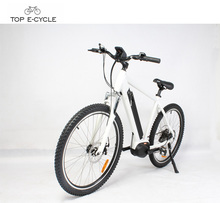 26inch wheel vintage Bafang MAX mid drive Electric motor Bike /dubai electric bike bicycle