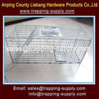 Humane Collapsible Live Animal Snare Cage For Cat,Dog,Rabbit,China Supplier