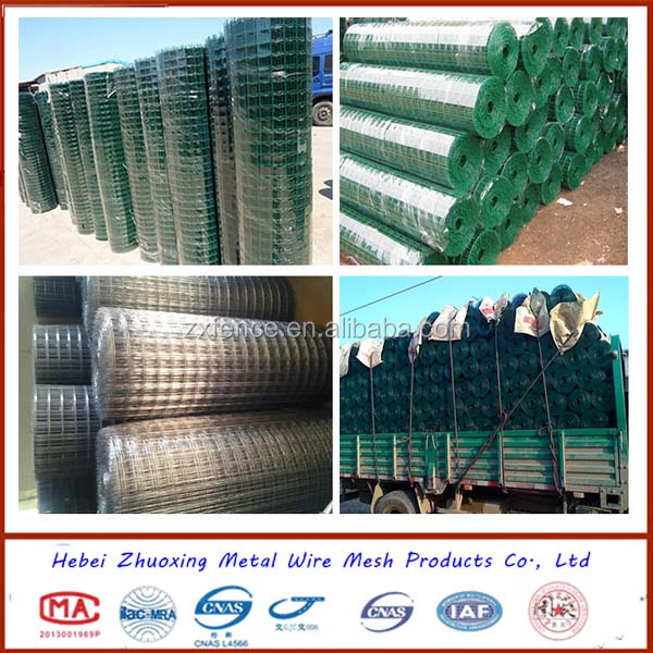 PVC fence/ holland wire mesh roll/mesh fence Zhuoxing