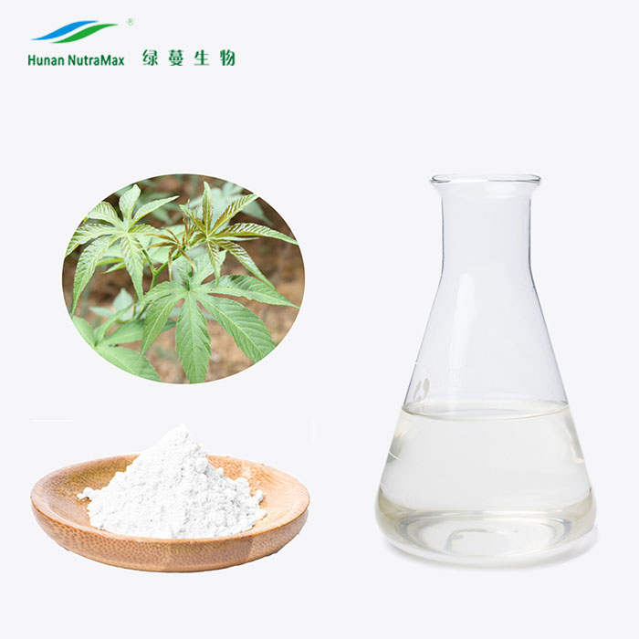 Natural Sweetener Sweet Tea Extract Sweet Blackberry Leaf Extract Rubusoside Powder 70%80%90% Rubusoside