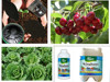 High quality bio liquid foliar fertilizer organic NPK fertilizer
