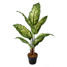 1.0m Dieffenbachia Fake Artificial Evergreen Trees