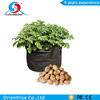 Vegetables Grow Planting Bags Garden Balcony Potatoes Tomatoes Planter Pots with handles