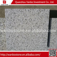Best Quality Cheap Price absolute white granite slab