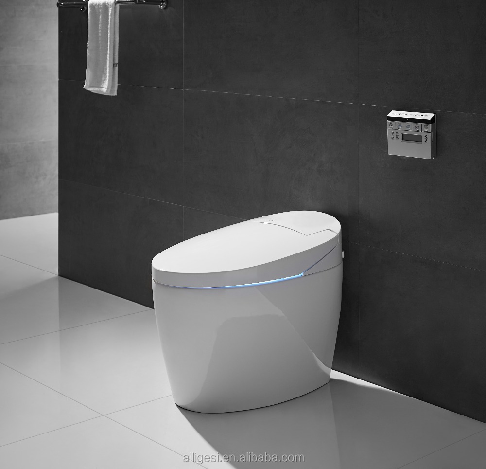 Tankless Automatic Flush Healthy Electronic Bidet ZJZ010J