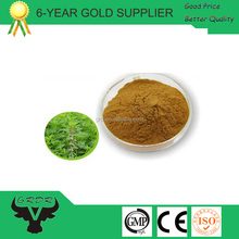 Chinese herb medicine motherwort extract stachydrine