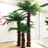 /product-detail/customised-outdoor-artificial-phoenix-palm-trees-with-synthetic-trunks-manufactory-60663565223.html