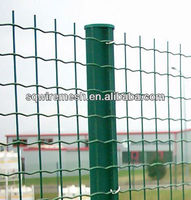 Exporting standard pvc coated Europe fence,Holland wire mesh fence in stock