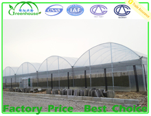 Commercial Used Plastic Film Greenhouses for Sale with ISO Quality Guaranteed