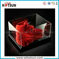 High Quality Transparent Acrylic Sneaker Box /Plexiglass Shoes Display Box /Plastic Running Shoes Display Rack Manufacturer