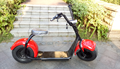 2017 new citycoco 2 wheel electric scooter Adult Electric Scooter 2 Wheels Electric scooter