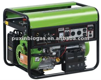 Small Size Biogas Generator