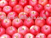 China fruit fresh fuji apple