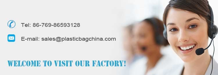 High quality China factory direct price cheap garment packaging ziplock bag