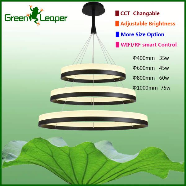 Energy efficient ring circle LED pendant light