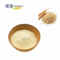 25 kg/bag Natural Food Ingredients Vital Wheat Gluten