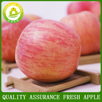 Best Price Fresh Fruits China Fuji Apples Exporter In China 75# A/B-2