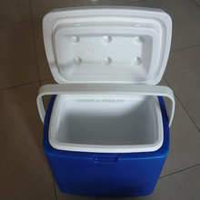 10L Car Cooler/Warmer Fridge Plastic Box for Picnic