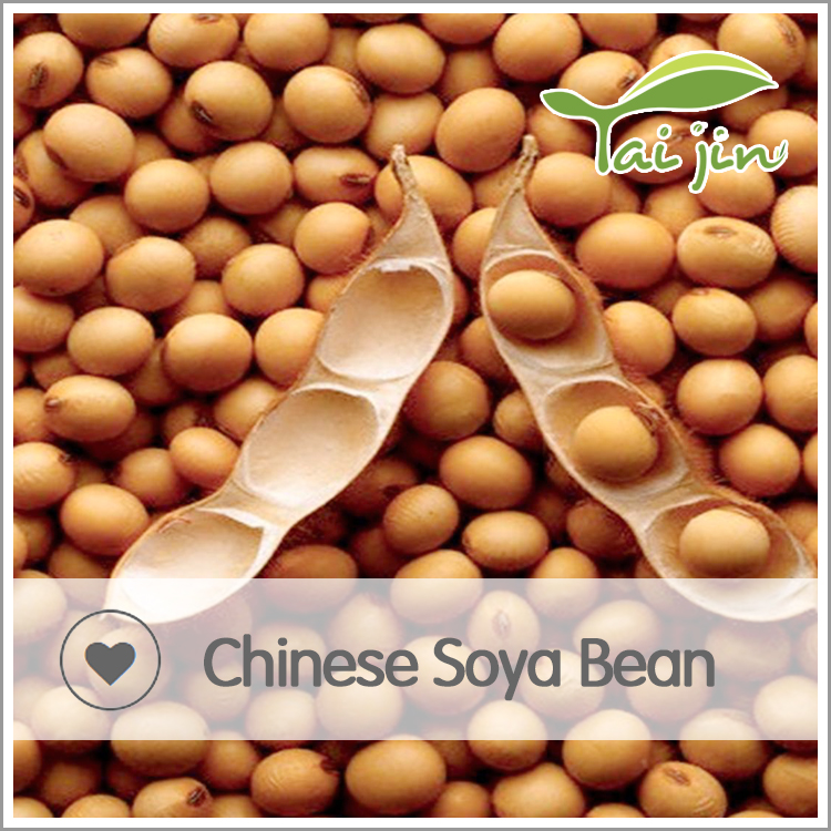 Natural plant soya bean with good quality