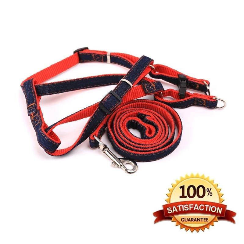 small MOQ acceptable top rank easy use light up dog leashes