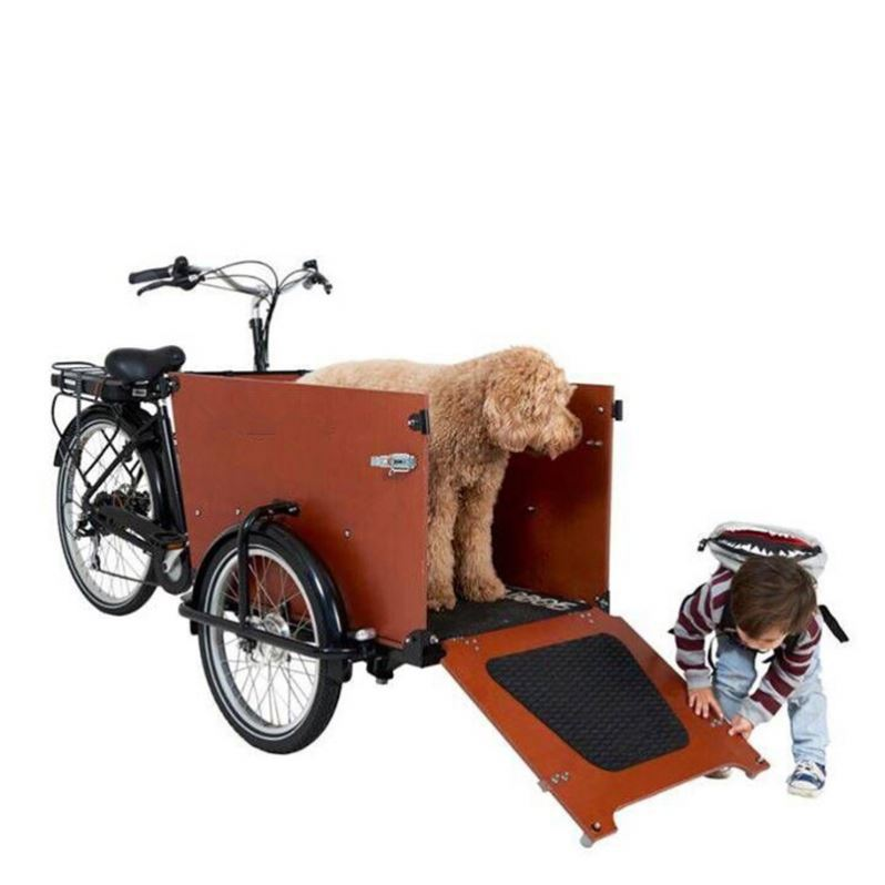 China Lowest Price Two Front Wheels Electric Cargo Trike Bike