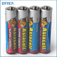 Many sizes of primary dry cell car battery