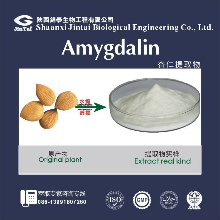 China manufacturer natural plant extract powder HPLC 98% Amygdalin