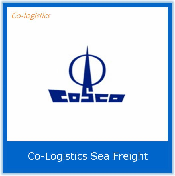 China FCL container shipping on sales to PANAMA CITY------Skype: colsales02