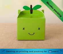 Green cute foldable paperboard box for single apple packing