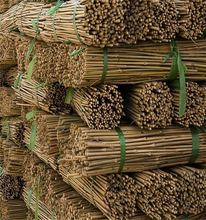 Natural Dry Tokin Bamboo Poles for Vineyard Sale