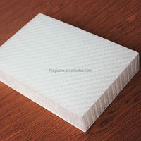 light weight Polypropylene honeycomb fiberglass panels for trailers