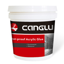 Eco-friendly Pure Acrylic Waterproof Wall Polymer Coating
