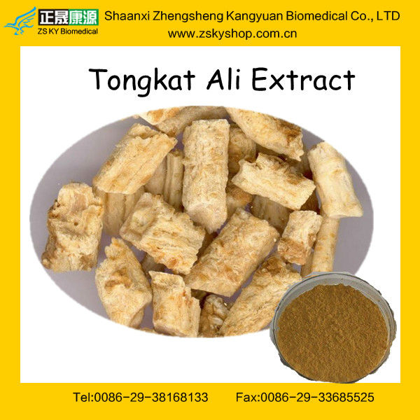 GMP Factory Supply Natural Tongkat Ali Extract