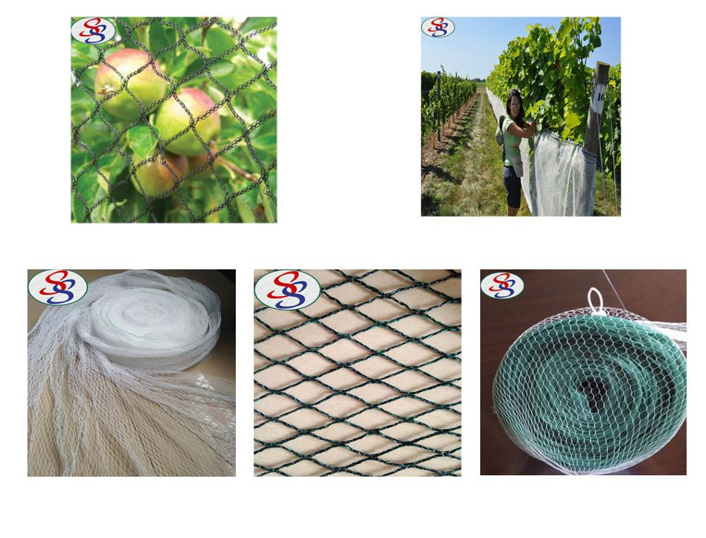 plastic anti bird capture netting for sale