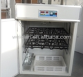 cheap ostrich eggs incubator of WQ-880