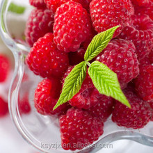 Raspberry juice beverage processing production line