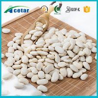 free samples kidney beans plant extract Phaseolus vulgaris benefits