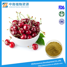 Supply 17% and 25% pure vitamin c acerola cherry fruit extract powder