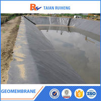 HDPE Composite Dimple Geomembrane