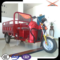 High Quality Electric Tricycle Adults 1000W, Battery Cargo Tricycle for Sale