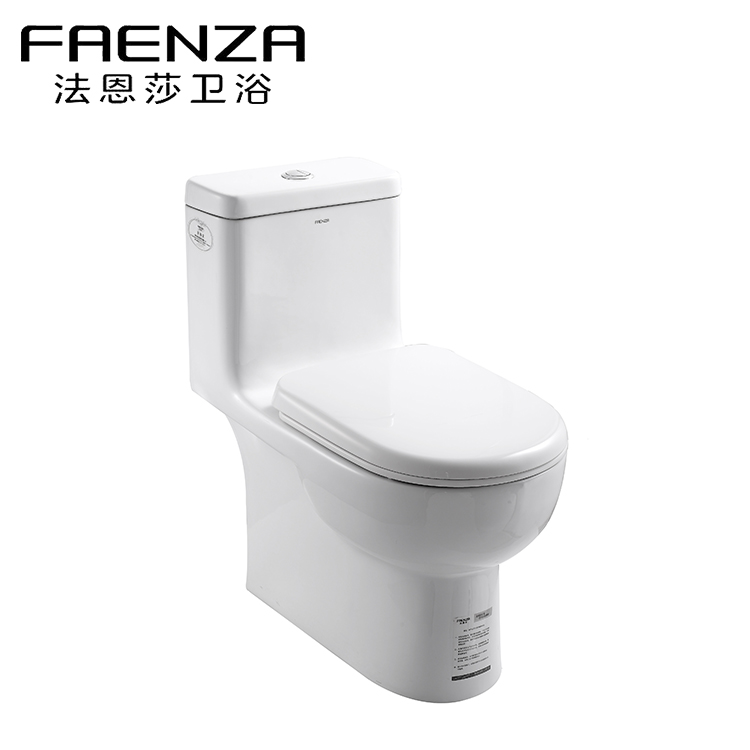 Family Expenses New Design Bathroom Style India Design Ladies Toilet