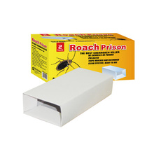 High quality cochroach insect killer pest control