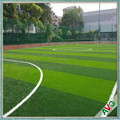 Guangzhou AVG Company Artificial Grass Lawn Cost Effective For Football Pitch
