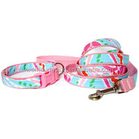Personalized Hot Lily Pulitzer Inspired Dog Collar And Leash