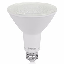 Cheap Price Led Spot Light Dimmable Led PAR30 800lm with UL, ES Listed