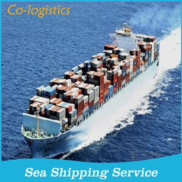 ship container from China to USA - Nika(Skype: nikaxiao)
