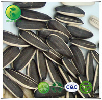 China Products Made Sunflower Seeds